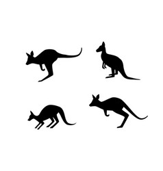 set of kangaroo in silhouette style art vector image
