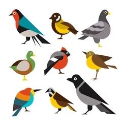Set of Wild Birds in Flat Style vector image