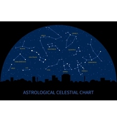 sky map with constellations zodiac vector image