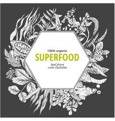 superfood hexagon banner sketch vector image