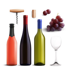 wine realistic set vector image