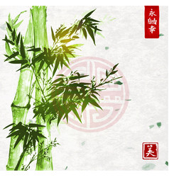 green bamboo on handmade rice paper background vector image