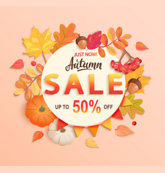 autumn sale banner up to 50 percent off vector image