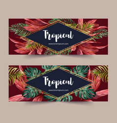 Banner design with monstera palms and red leaves vector