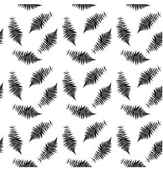 black and white silhouette of leaf libistones vector image