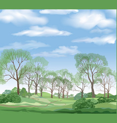 Landscape background summer trees countryside vector