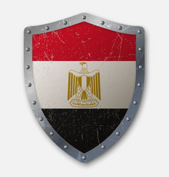 old shield with flag vector image
