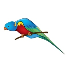 Parrot on a branch vector image