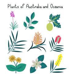 Plants australia and oceania vector