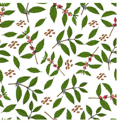 Seamless pattern with branches and beans coffee vector