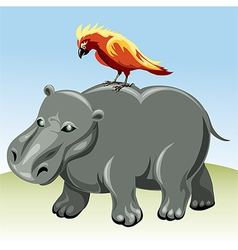 The hippopotamus vector image
