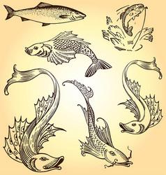 Various retro vintage fish set vector