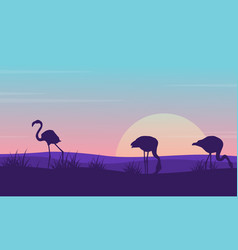 collection of flamingo landscape silhouette design vector image vector image