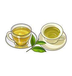 porcelain glass mug saucer sets green tea leaf vector image vector image