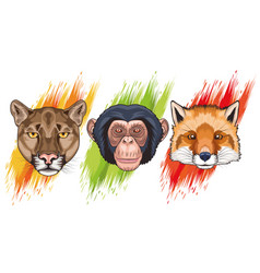 Bundle three animals heads characters vector