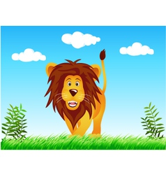 lion in the wild vector image