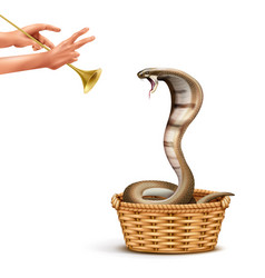 Snake charmer realistic composition vector