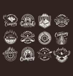 vintage summer camping badges vector image