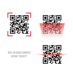qr code samples vector image