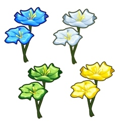 Four bright yellow blue green and light flowers vector image vector image