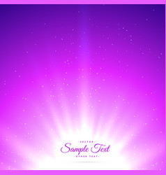 Purple sunburst shiny glowing background vector