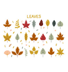 Autumn leaves fall set colorful leaves simple vector