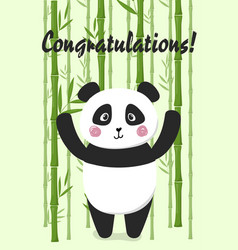 congratulations card with panda on bamboo back vector image