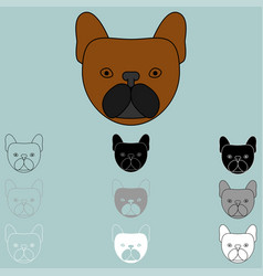 dog face brown black grey white icon vector image