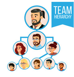 Project team organization chart employee vector