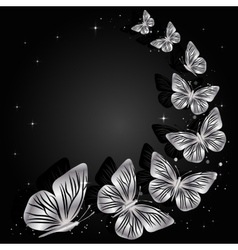 Silver butterflies on dark background vector
