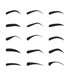 set of female eyebrows in different shapes vector image