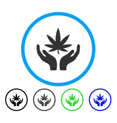cannabis care rounded icon vector image vector image