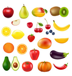 collection fresh fruit vector image