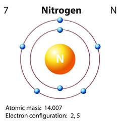 Diagram representation of the element nitrogen vector image vector image