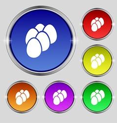 Eggs icon sign Round symbol on bright colourful vector