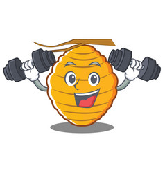 Fitness bee hive character cartoon vector