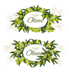Greek olives with leaves wreath around sign icons vector