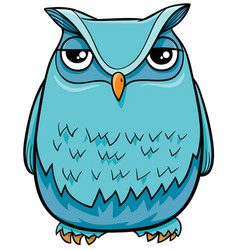 Owl bird cartoon character vector