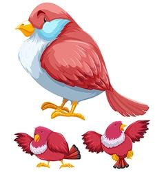 Pink bird in three actions vector