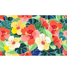 Tropical colorful hibiscus vector