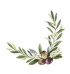 Watercolor wreath olive branches and vector