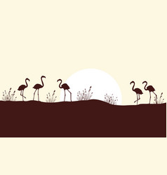 beauty scene hill with flamingo silhouettes vector image