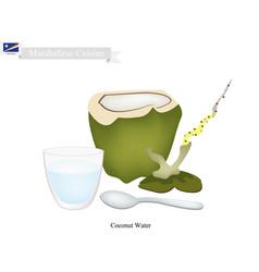 coconut water drink vector image vector image