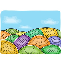 agricultural fields vector image