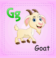 animals alphabet g is for goat vector image