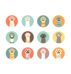 cat paws collection domestic animals hands vector image