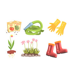 Garden instruments and stuff for plant flowers vector