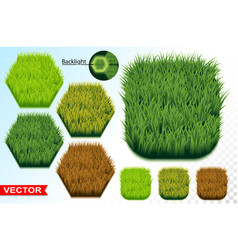 green grass hexagon seamless pattern icon vector image