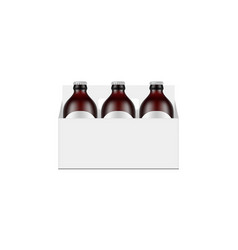 Paper carrier packaging box mockup with beer vector
