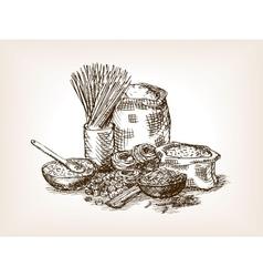 Pasta still life sketch style vector